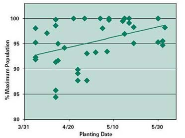 Graph of final plant populations in planting date research trials