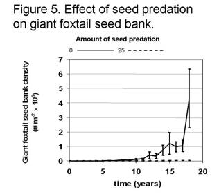 the value of intercepting weed seed before they enter the seed bank is  somewhat of a forgotten control tactic  in the 1930's and 40's, combines  were