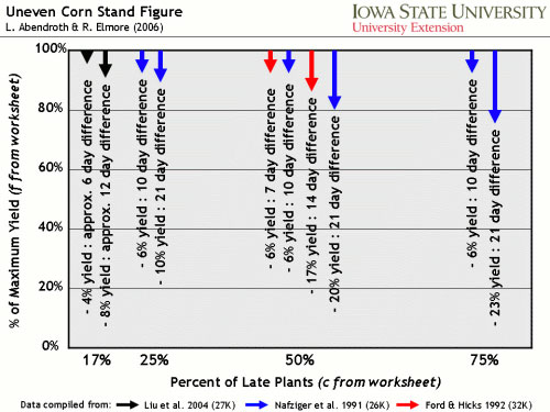 Graph of uneven corn stand