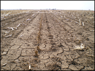 Early corn harvest and residue management this fall for Soil definition