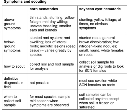 symptoms and scouting nematodes