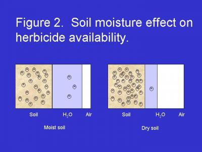 Absorption of Soil-Applied Herbicides | Integrated Crop
