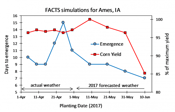 Cold stress affect on days to emergence and yield potential