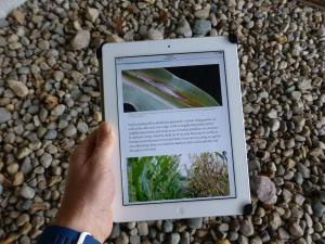 The Field Crop Scouting interactive book can be accessed through common web browser software on tablets, smartphones and desktop and laptop computers.