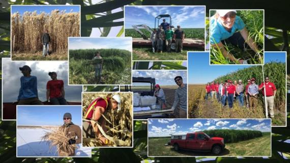 Pictures of ISU Biomass team and activities