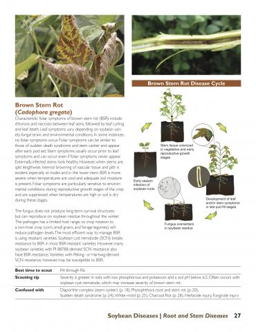 Brown stem rot page from Soybean Diseases publication