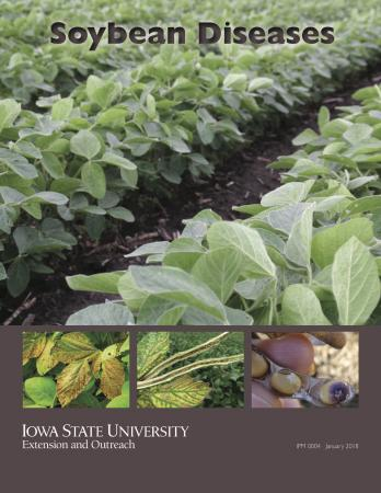 Front cover of updated Soybean Diseases publication