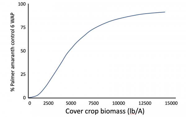 Impact of cover crops on weed management   Integrated Crop Management