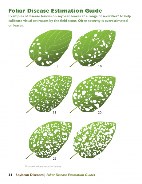 Leaf lesion severity sample page from newly revised Soybean Diseases from Iowa State University Extension and Outreach