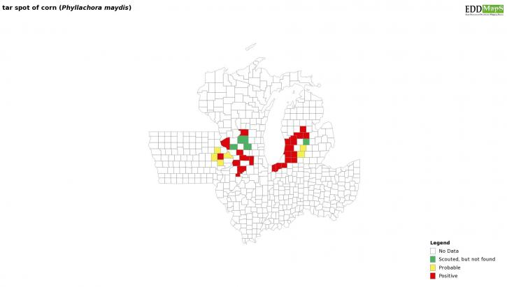 Map of IA, IL, WI, MI and IN with counties colored red or yellow to indicate where tar spot has been observed