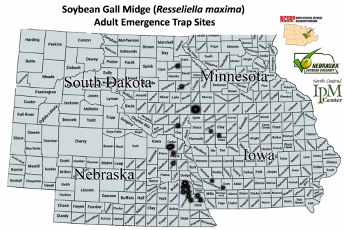 Locations of 2019 soybean gall midge traps.