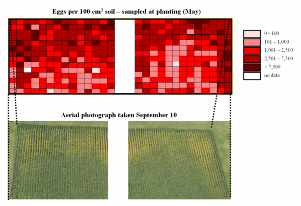 Figure 1. Map of the initial soybean cyst nematode (SCN) population densities (top) and an aerial image (bottom) taken in September of the sampled area in an SCN-infested field at the Iowa State University Northern Research and Demonstration Farm just south of Kanawha, Iowa.