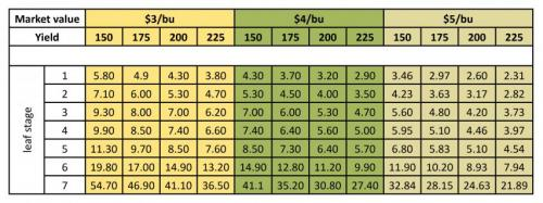 Economic threshold table for stalk borer.