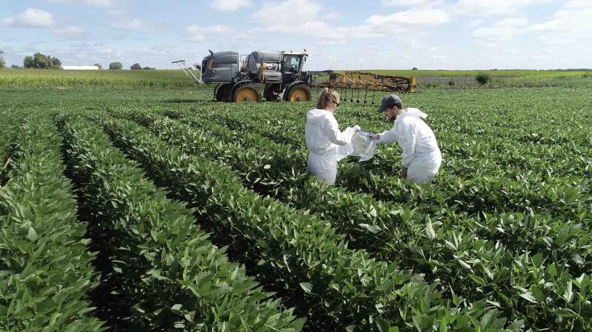 researchers in crop field testing fungicide application methods
