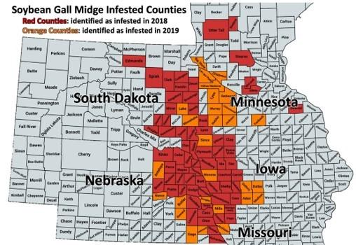Soybean gall midge distribution from 2018 and 2019 map