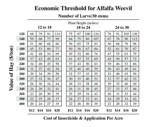 Threshold table for alfalfa weevil.